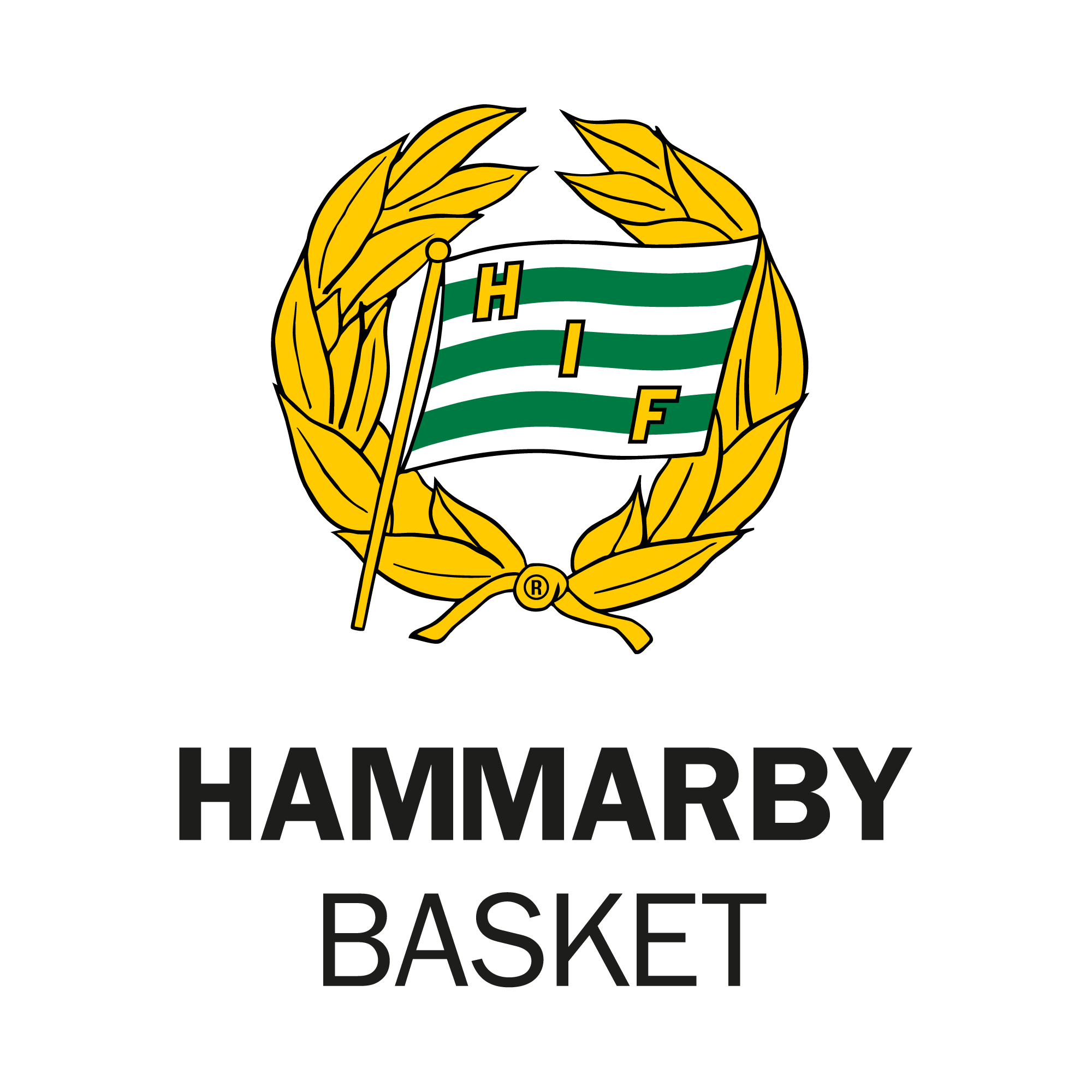 Hammarby Basket